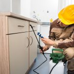 Three Things to Consider When Choosing a Pest Control Company