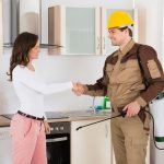Should You Do Your Own Home Pest Control?