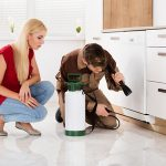 71176938 - woman looking at exterminator worker spraying insecticide chemical for termite pest control in house kitchen